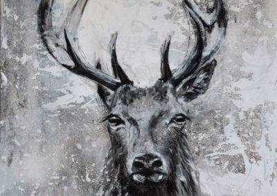 Hirsch 1 | Mischtechnik  auf Leinwand | 60 x 60 cm | verkauft