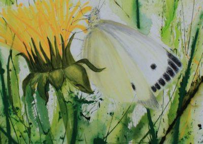Zyklus Wiese | Löwenzahn mit Schmetterling | Acryl auf Leinwand | 80 x 80 cm