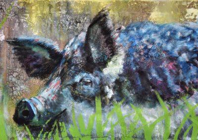 Wollschwein  |  Mischtechnik auf Leinwand  |  40x60cm