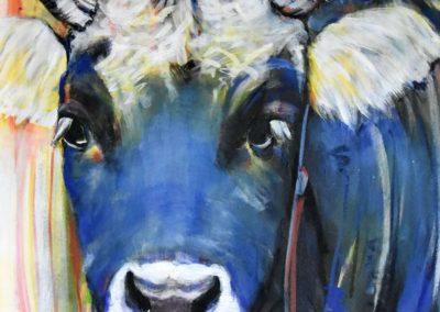 Blaues Muneli, Grauvieh | Acryl auf Leinwand | 60x60
