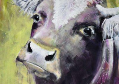 "Kuh ""Paula"" | Acryl und Oel auf Leinwand | 80x80cm"